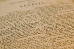 Genesis Bible Study Guide